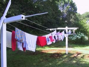 clothesline-1463045-640x480